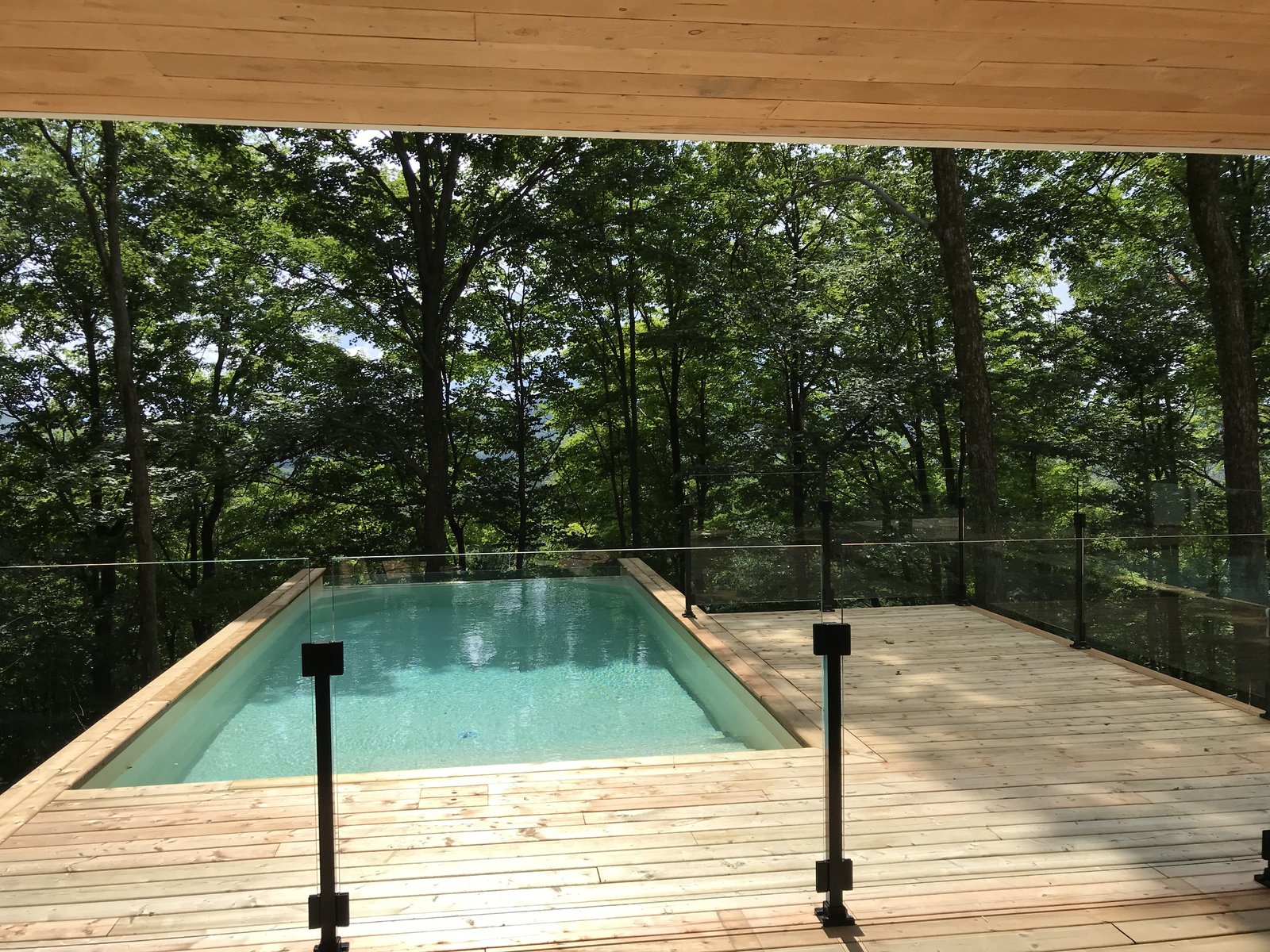 Outdoor, Landscape Lighting, Back Yard, Salt Water Pools, Tubs, Shower, Vegetables, Concrete Pools, Tubs, Shower, Wood Patio, Porch, Deck, and Infinity Pools, Tubs, Shower  the Enright house