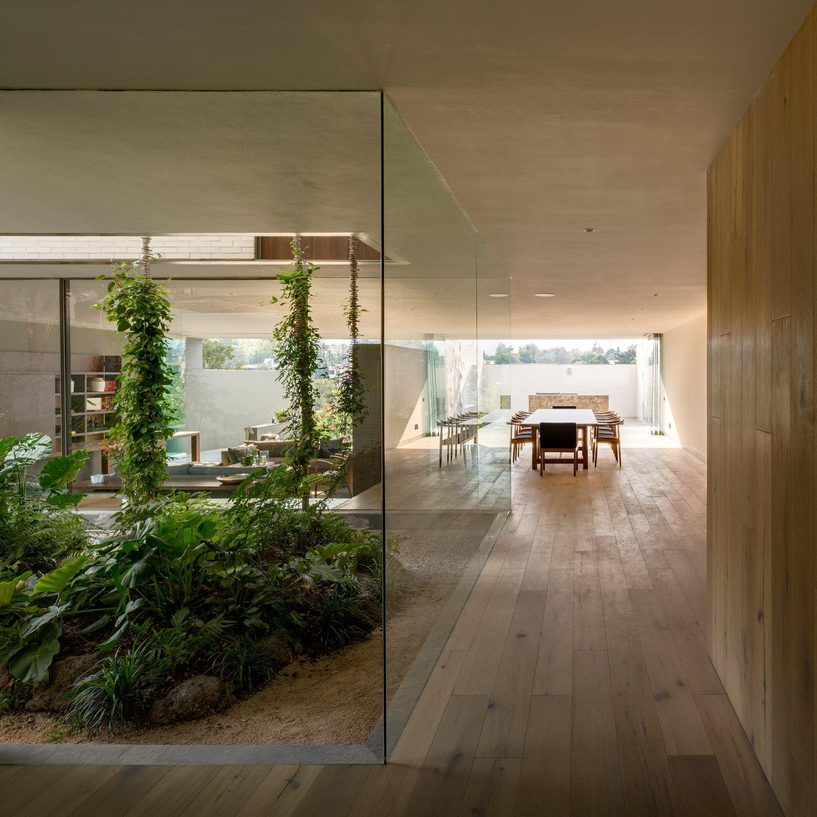 Hallway and Medium Hardwood Floor  Photo 20 of 20 in A Serene Home in Mexico Weaves Around Verdant Gardens