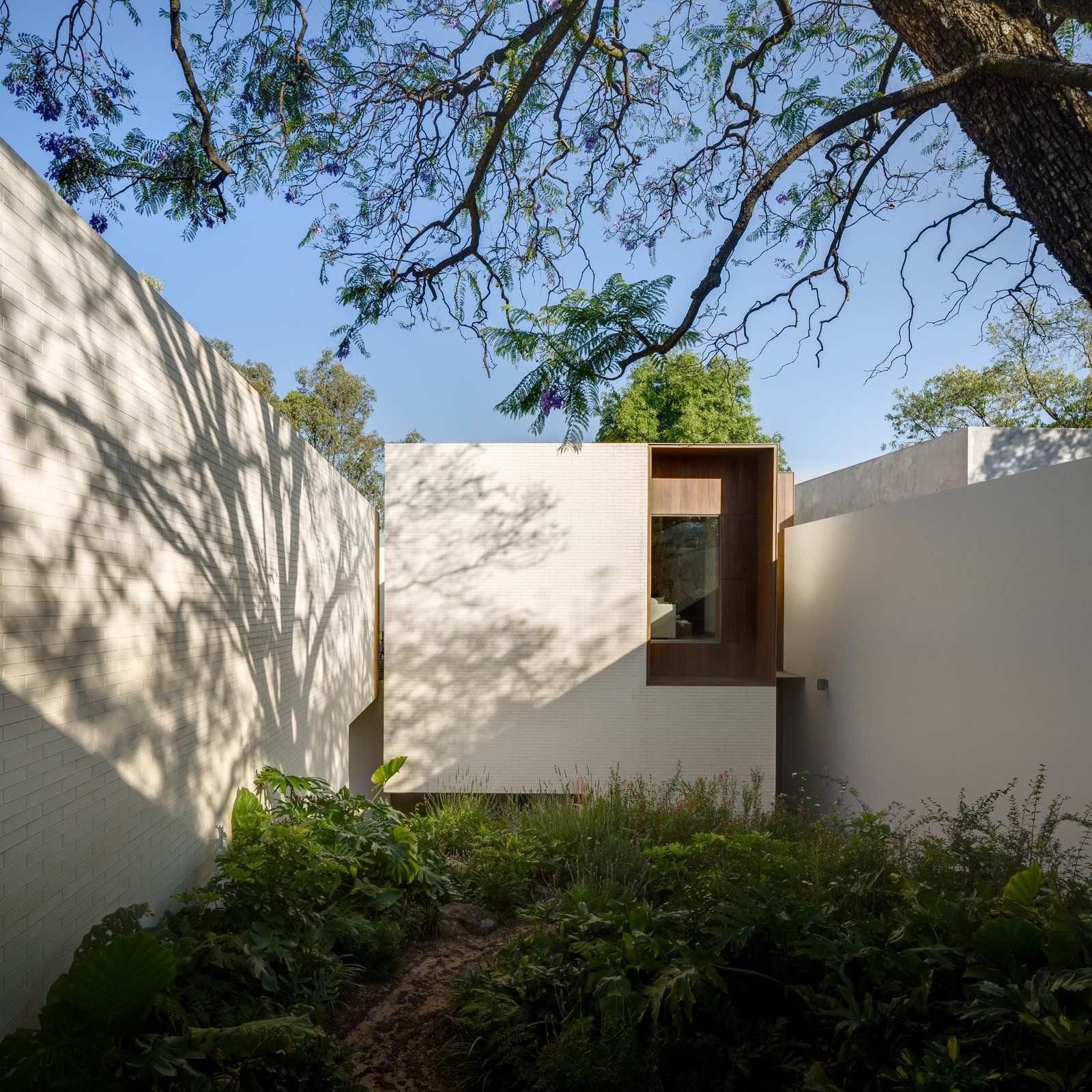 Exterior, Flat RoofLine, and House Building Type  Photo 1 of 20 in A Serene Home in Mexico Weaves Around Verdant Gardens