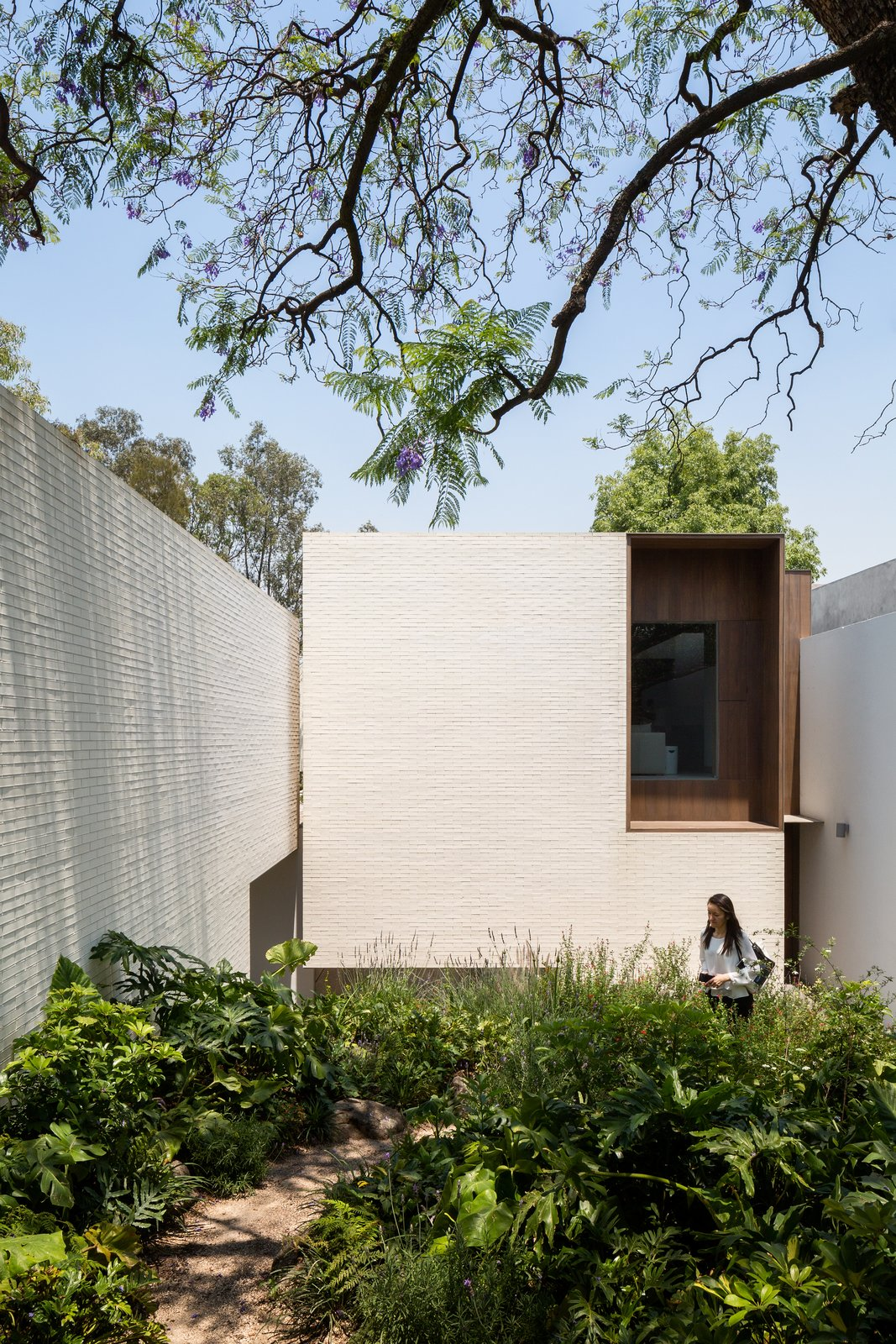 Outdoor, Garden, Walkways, Trees, Hardscapes, Shrubs, and Gardens  Photo 9 of 20 in A Serene Home in Mexico Weaves Around Verdant Gardens
