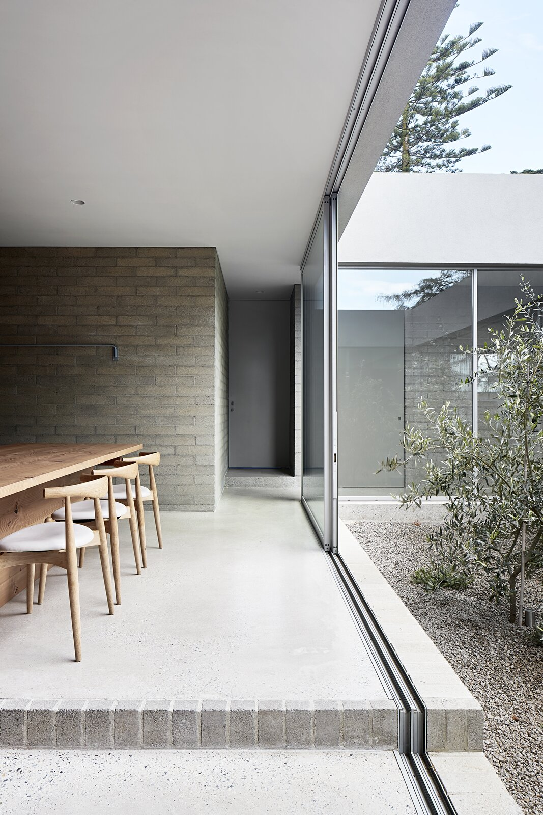 Windows, Picture Window Type, and Sliding Window Type  Photo 5 of 20 in A Concrete House Is Softened by an Airy Internal Courtyard, Complete With an Olive Grove from Ruxton Rise Residence