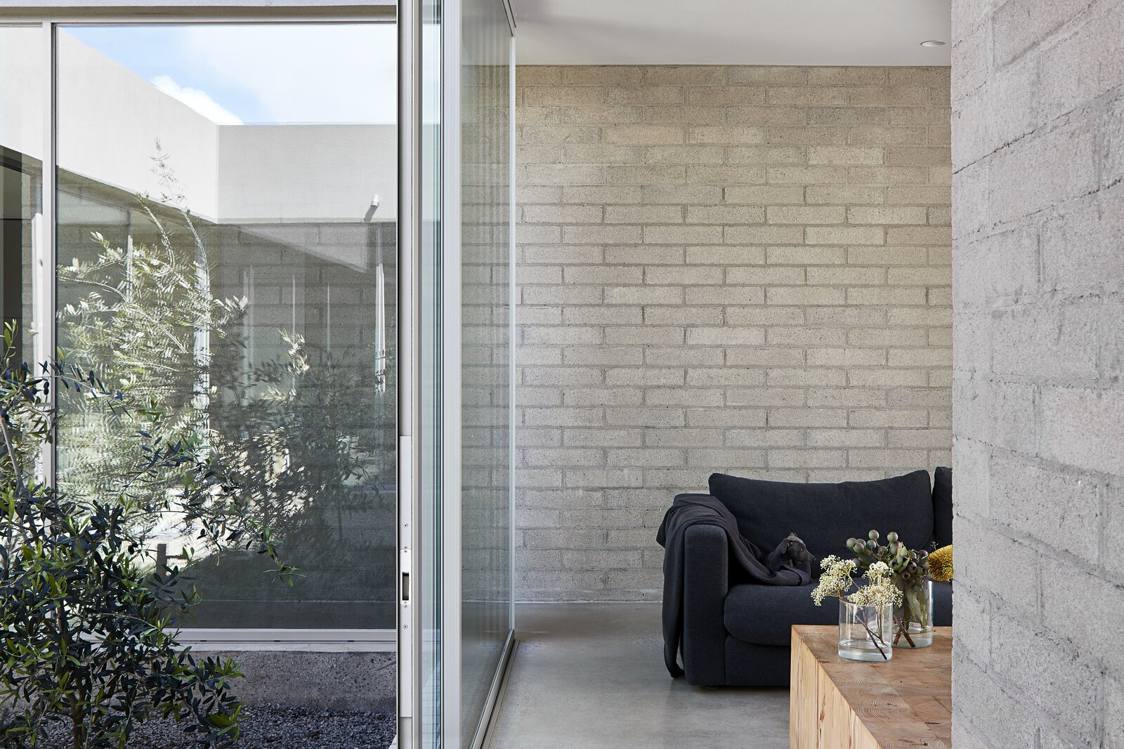 Living Room, Sofa, Recessed Lighting, Ceiling Lighting, Coffee Tables, and Concrete Floor  Photo 15 of 20 in A Concrete House Is Softened by an Airy Internal Courtyard, Complete With an Olive Grove