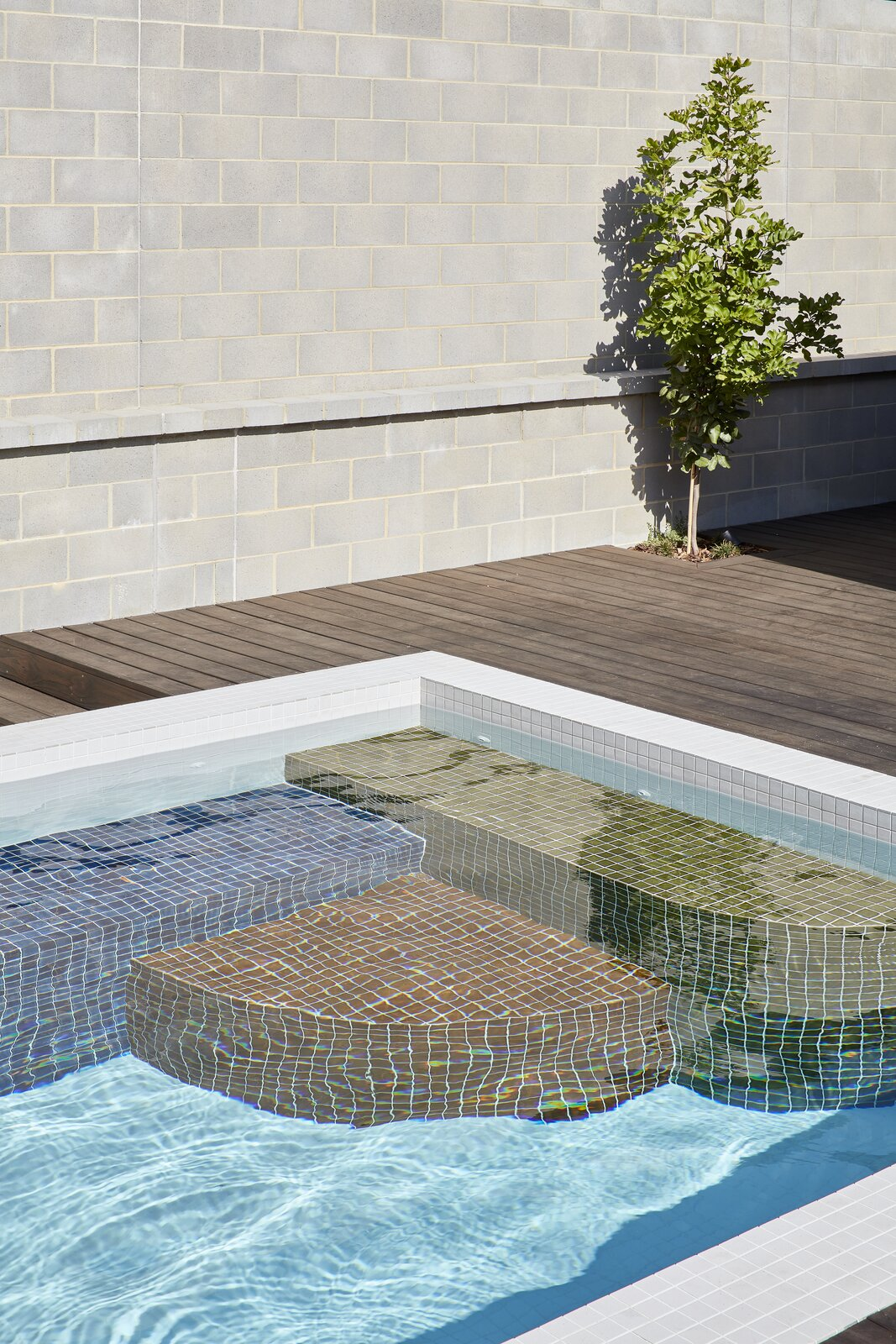 Outdoor and Small Pools, Tubs, Shower  Photo 22 of 23 in Mechanized Shutters Protect This Australian Home From Prying Eyes from Shutter House