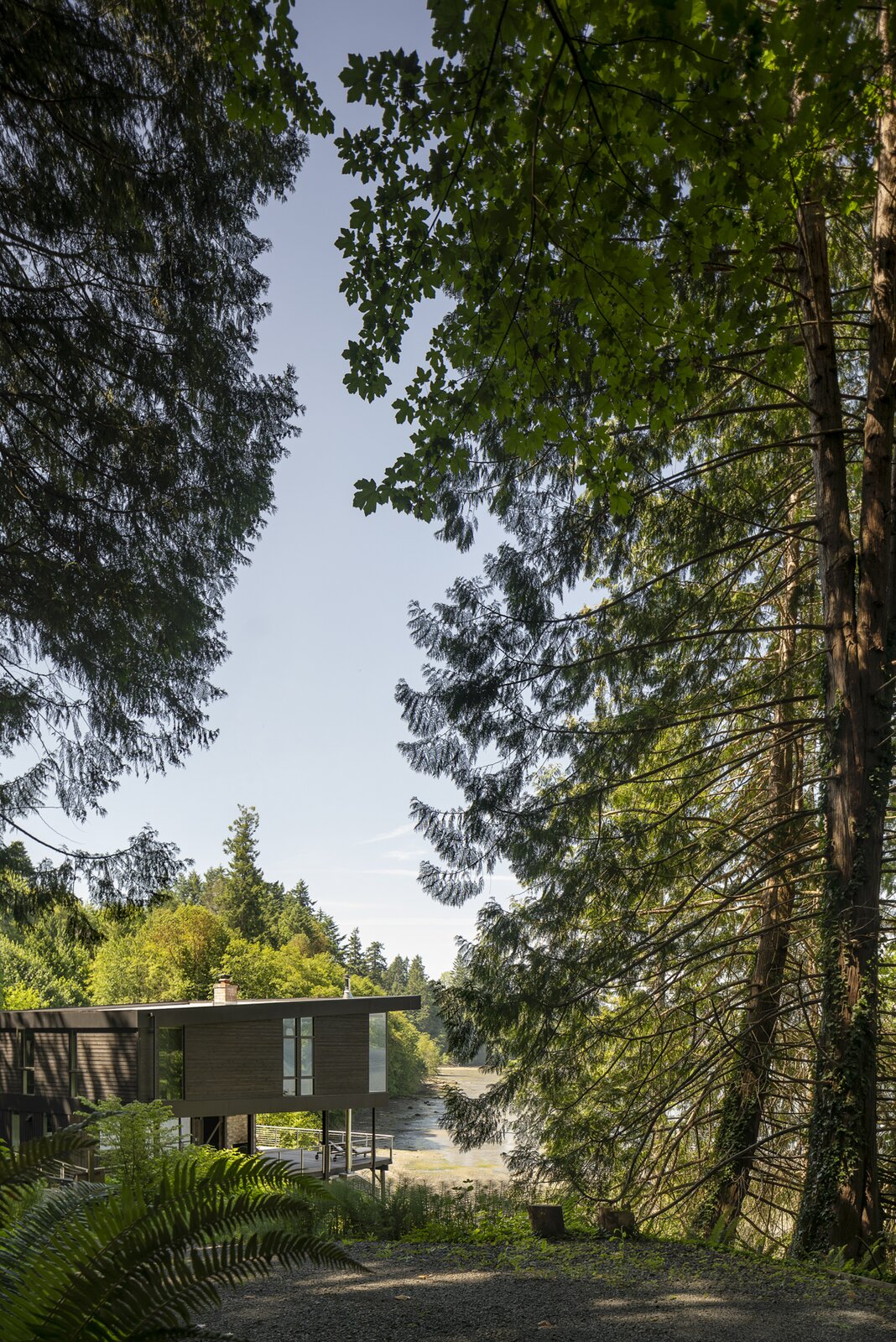 Outdoor, Shrubs, and Trees  Photo 13 of 13 in A Waterfront Home in Washington Grows Two Hovering Wings