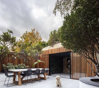 Timber Slatting Steals the Show at This Renovated Terrace House in London